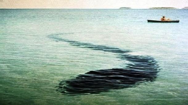 25 monstro marinho criatura fundo mar