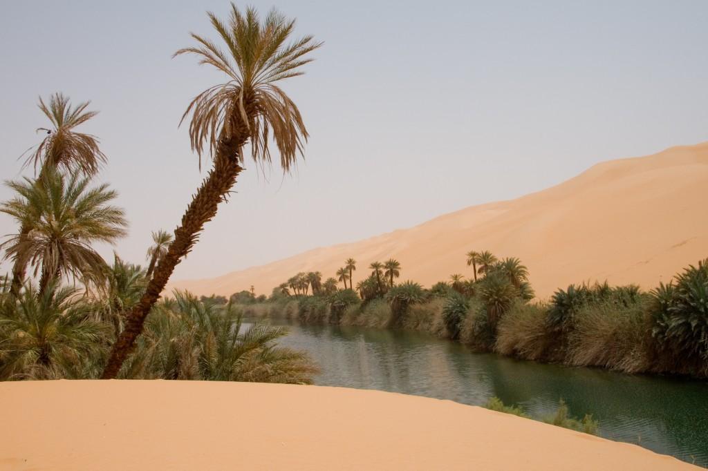 O deserto já teve uma boa vegetação