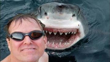 Selfie com tubarão