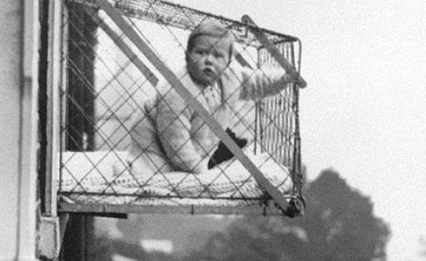 foto historia bebe jaula gaiola altura predio
