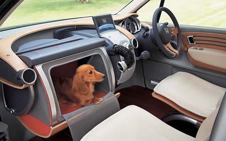invencao japonesa carro monitor cachorro cao