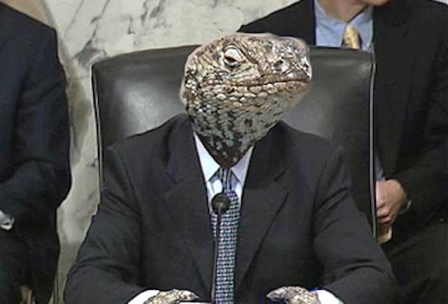 reptiliano terno infiltrado