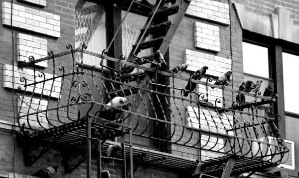 escada de incendio
