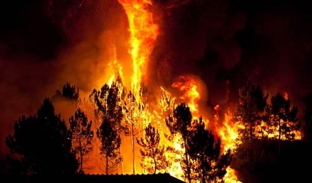 Incêndios naturais na Antártida eram comuns há 75 milhões de anos