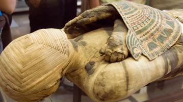 múmia-exposição