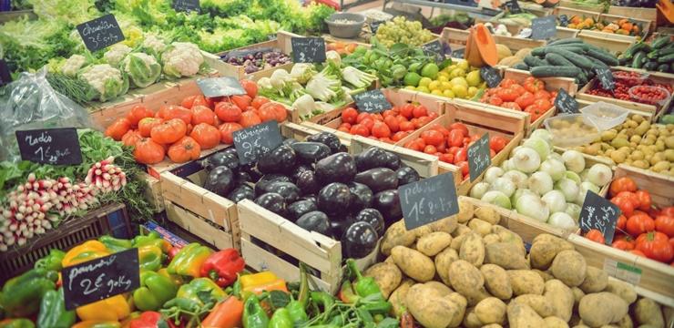 01-food-comida-vegetais