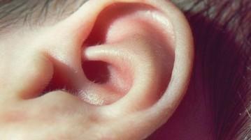 02-orelha-ouvido