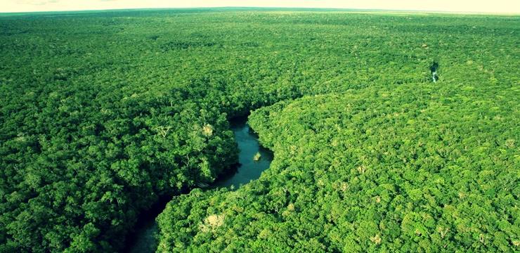 09-amazonia-floresta-amazonica