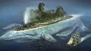 baleia-ilha