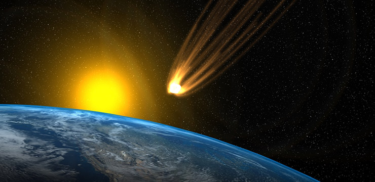 Quem dominaria a Terra se a raça humana fosse extinta?