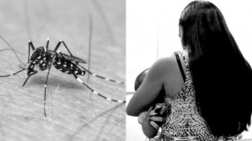 00-zika-microcefalia