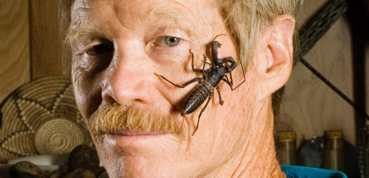 justin-schmidt-insetos-01