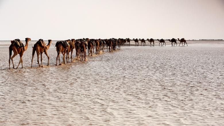 deserto-de-danakil