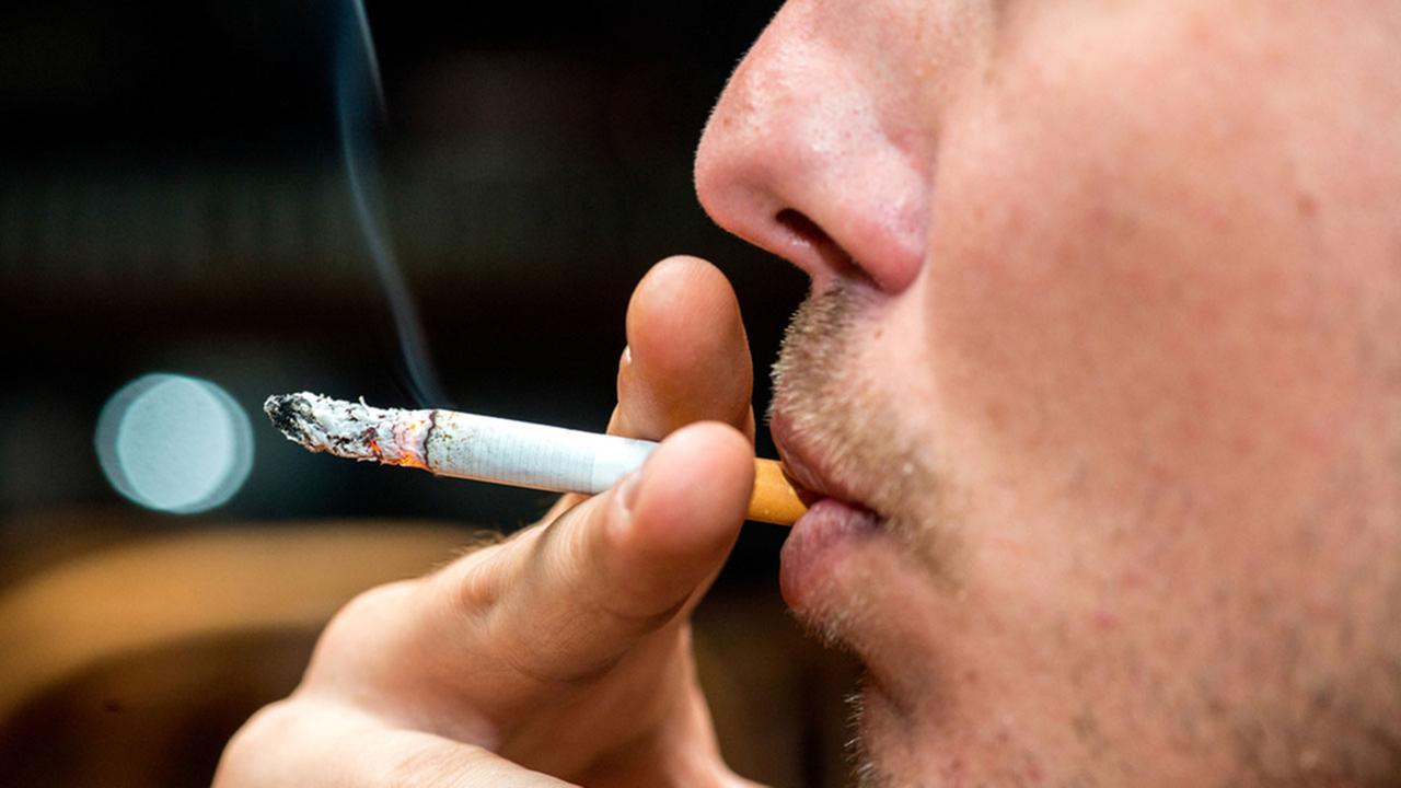 A fumagem deixada e não pode cantar