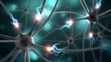 sinapses do cérebro
