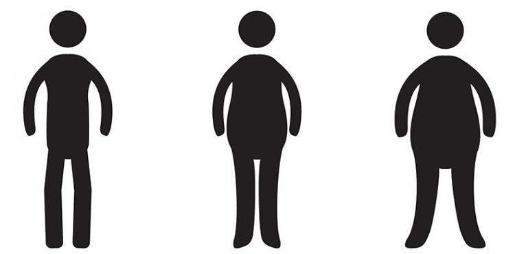 curiosidades sobre a obesidade