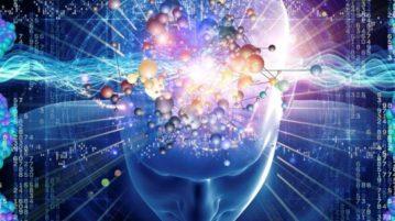 curiosidades sobre a mente humana