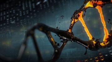 DNA - Computador