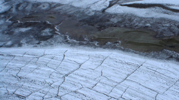 permafrost doenças