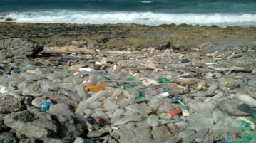 poluição garrafas plásticas