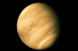 vênus2