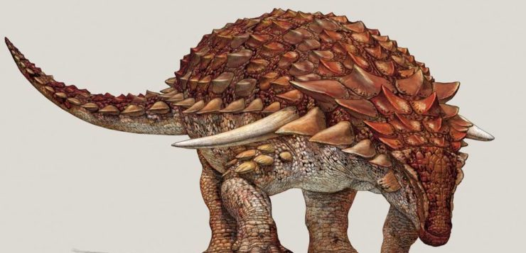 (Foto: Royal Tyrell Museum of Palaeontology / Reprodução)