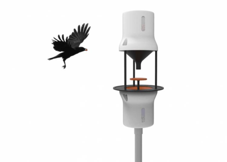 crow-cleaners4-750x534[1]