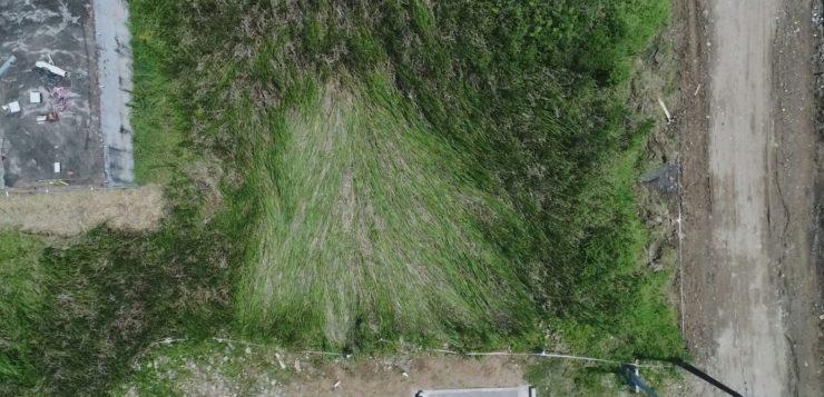 Imagem do local onde suposto OVNI teria passado (Foto: Edilson Almeida/Prefeitura de Peruíbe)