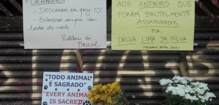 serial killer animais