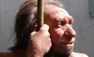 neandertais-capa
