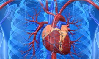AN transplante de coração transplantes de coração