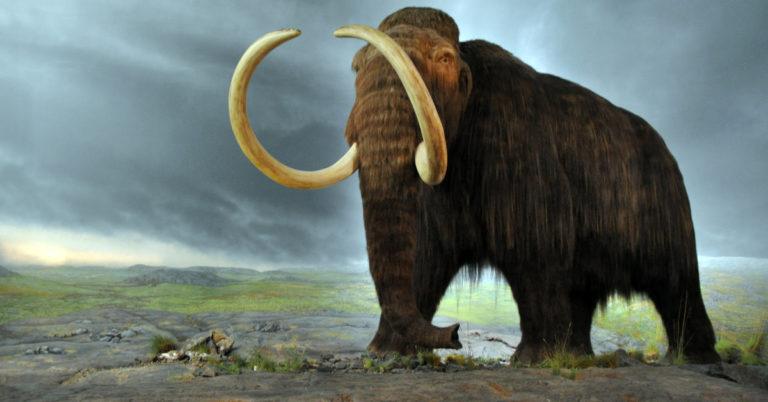 Por que vários animais pré-históricos eram tão grandes? A ciência explica