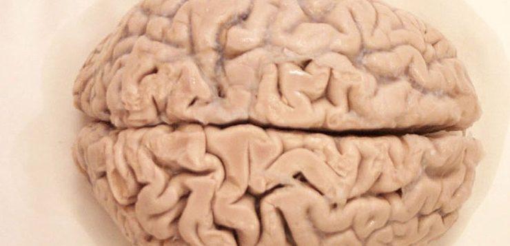 Estudo revela que seu cérebro pode ser treinado para curar doenças