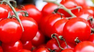 tomate-capa