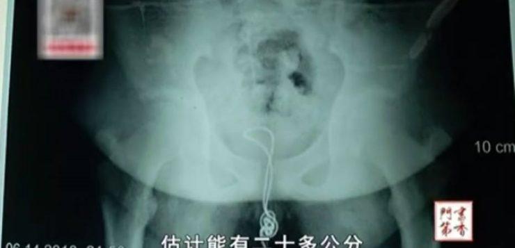 AN cabo usb pênis