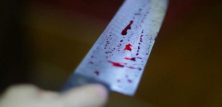 facada lâmina crânio