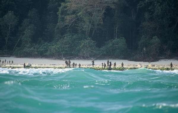 Uma imagem distante da tribo sentinelesa. Fonte: Divulgação/Survival International