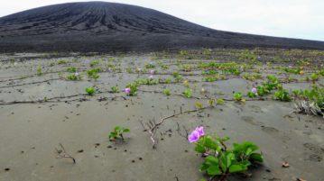 lama misteriosa ilha
