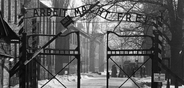 negação do holocausto auschwitz
