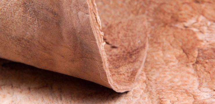 Tecido feito de fungos pode ser alternativa sustentável ao couro sintético