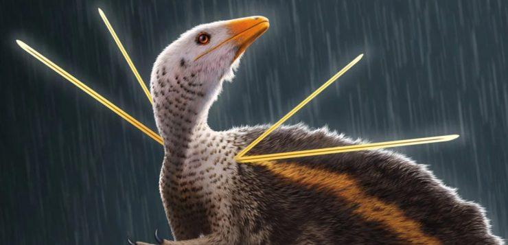 dinossauro-ubirajara-jubatus