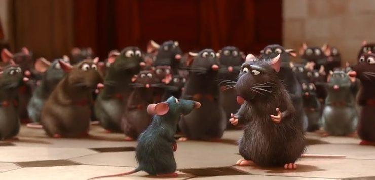praga de ratos