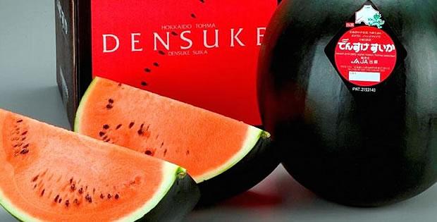 melancia-negra-densuke