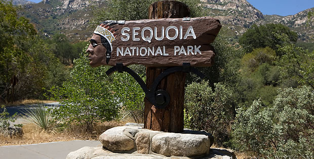sequoia-national-park-entrada